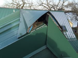 Roof With Opening for Bats